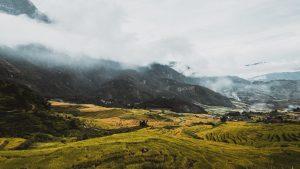 Hmong translation, transcription, voiceover, subtitle, and interpretation agency